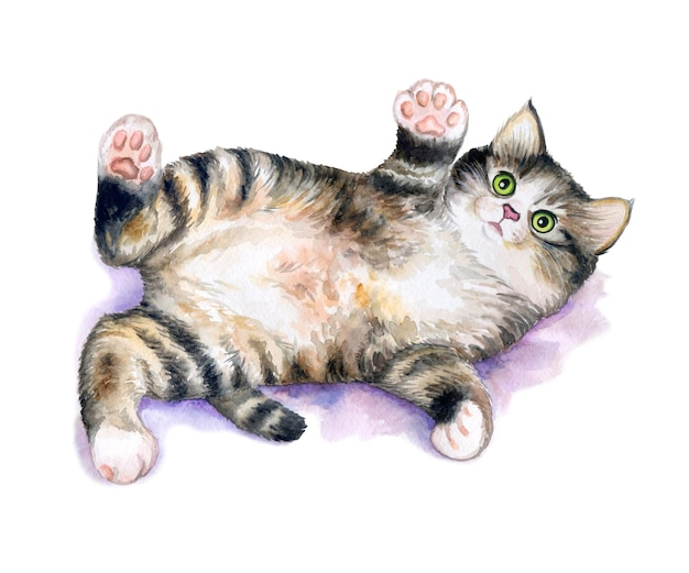 Kitten playful isolated on white background cute and happy kitten watercolor illustration
