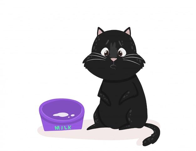 Kitten shows an emotion