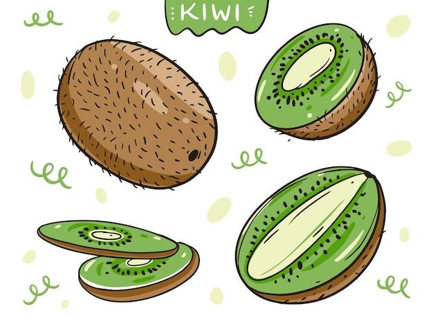 키위 과일 전체 및 단면. 손으로 그린 만화 스타일.
