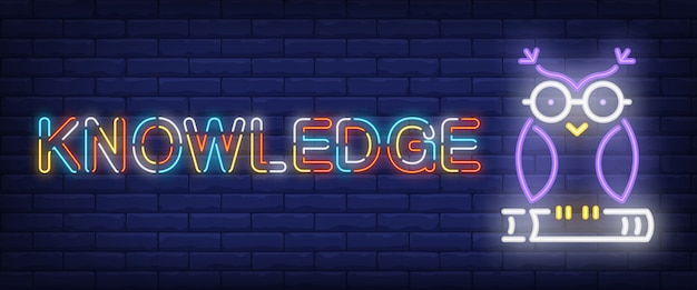 Testo al neon della conoscenza con il gufo sul libro