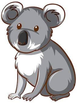 Cartone animato animale orso koala su sfondo bianco