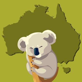 Koala on branch tree australian animal wildlife map  illustration