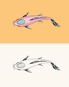 鯉鯉日本魚動物刻まれた手描き線画ヴィンテージ