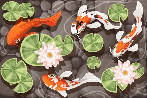 투명한 물과 돌 바닥 평평한 벡터 삽화에 녹색 잎이 있는 백합 연꽃이 있는 연못에서 수영하는 잉어