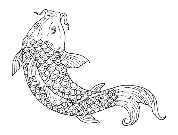 鯉。ヴィンテージ彫刻黒モノクロイラスト。白で隔離