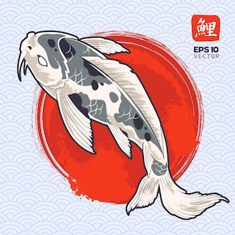 그려진 빨간색 원에 잉어 물고기. 일본 잉어.