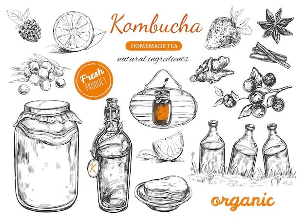 Сбор домашнего чая чайный гриб. рисованной иллюстрации.