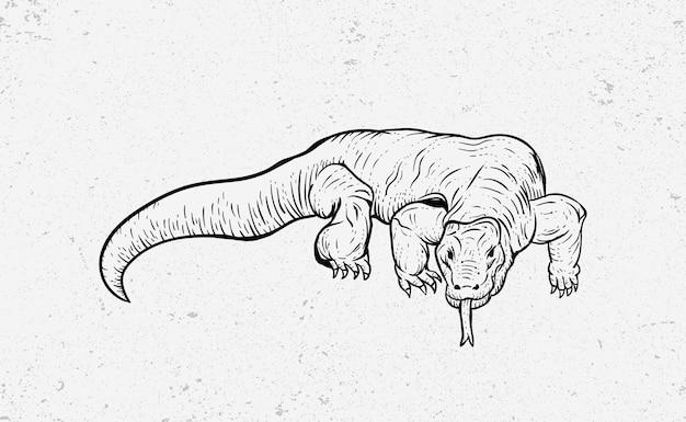 Komodo dragon vintage illustration