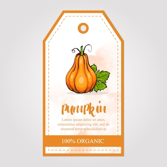 Label of pumpkin jam with watercolor background