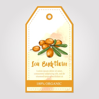 Label of sea buckthorn jam with watercolor background