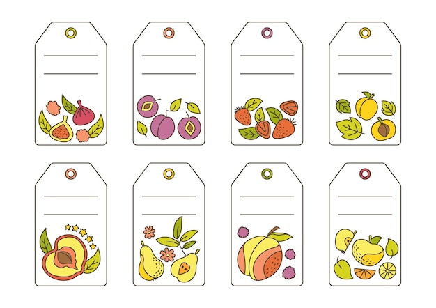 Label with fruit doodle set template. tropical price tag fruit, pineapple pear watermelon and tangerine, fig, lemon.