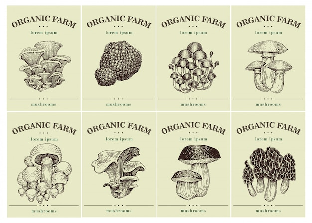 Labels with various mushrooms.