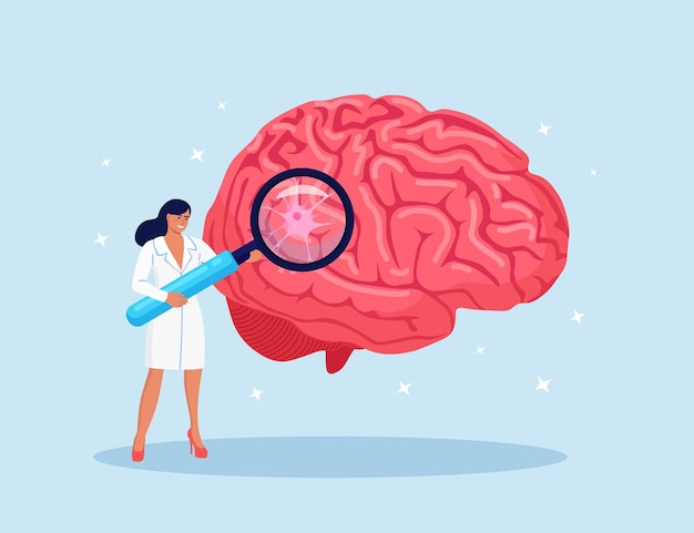Laboratory scientist study human brain by magnifying glass. head tomography. doctor diagnoses of alzheimer and dementia disease, memory loss problem. researching in neurology, psychiatry, stroke