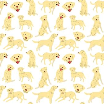 래브라도 패턴, 개 포즈
