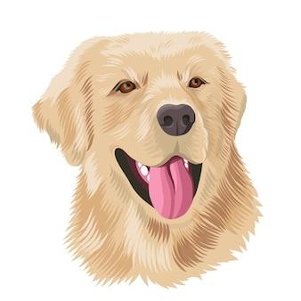 ラブラドールレトリバー犬の肖像画イラスト