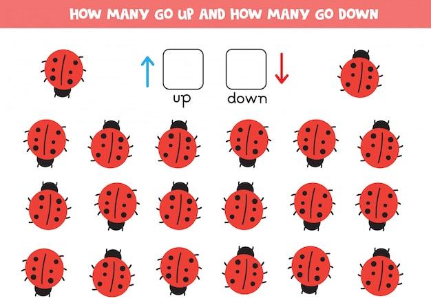 Ladybird orientation for kids.