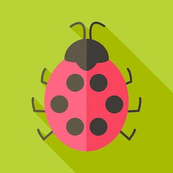 Ladybug insect. flat stylized illustration with shadow