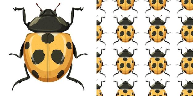 Coccinella insetto e senza soluzione di continuità