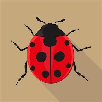 Ladybug isolated flat style, vector illustration.