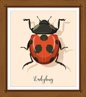 てんとう虫またはてんとう虫が木製フレームにクローズアップ