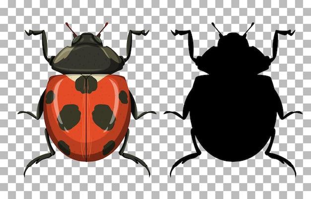 Ladybug on transparent background