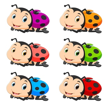 Ladybug with different color