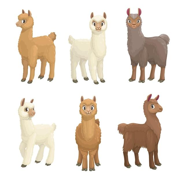 Lama, alpaca, guanaco, llama and vicuna animals cartoon set