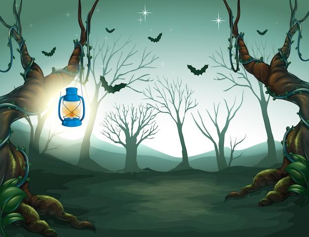 어두운 숲에서 램프 빛