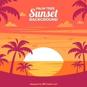Landscape background at sunset with palm trees