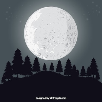 Landscape background with trees and moon
