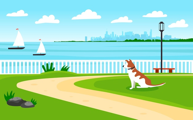 Landscape by the sea. seafront. the dog looks into the distance to the shore