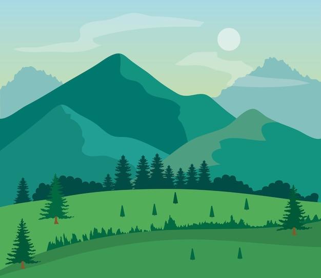 잔디 필드, 소나무와 산 풍경 자연.
