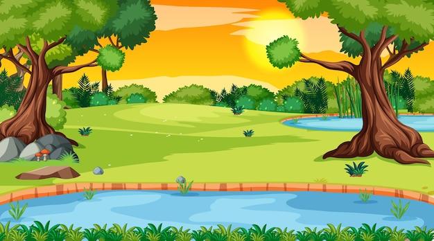 川とたくさんの木々のある森の風景シーン