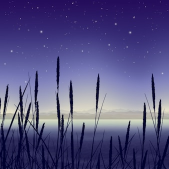 Landscape in a swamp at night