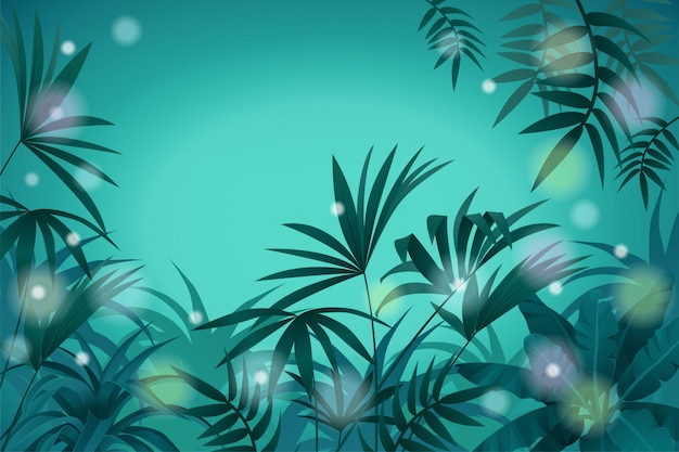 Landscape tropical jungle and night light background