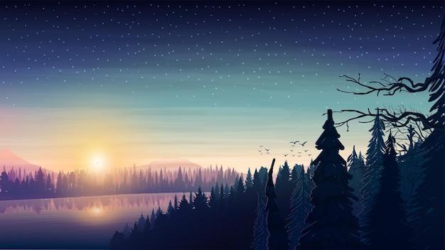 일출 언덕이 많은 지역의 울창한 소나무 숲을 통해 흐르는 넓은 강 풍경. 별이 빛나는 하늘 숲에서 일출