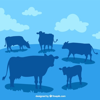 Landscape with many cow silhouettes