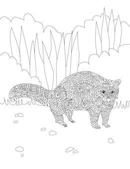 Large adorable raccoon line drawing waiting for long time on this own at the forest. wild life line drawing staying in a while alone inside wildwoods.