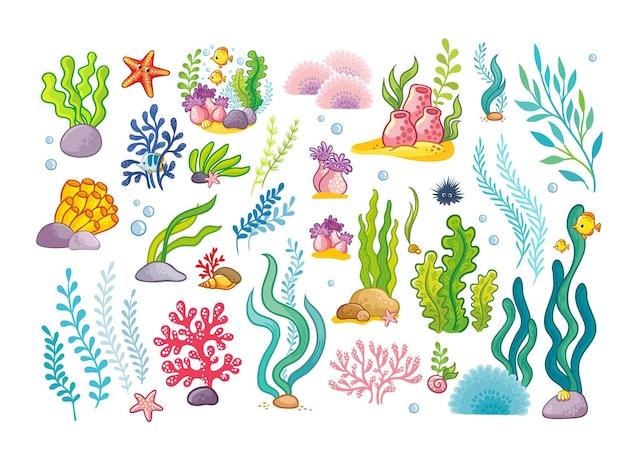 Большая коллекция морских объектов, водорослей и рыб.