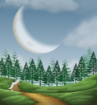 Large cresent moon nature scene