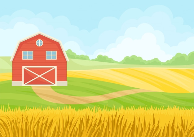 Large red barn with closed gate in a wheat field.
