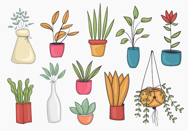 Large set home plant set of colorful hand drawn potted plant illustration