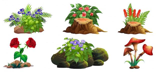 바위와 나무에 화려한 꽃의 큰 세트