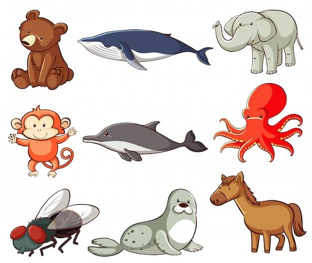 많은 종류의 동물과 함께하는 야생 동물의 큰 세트