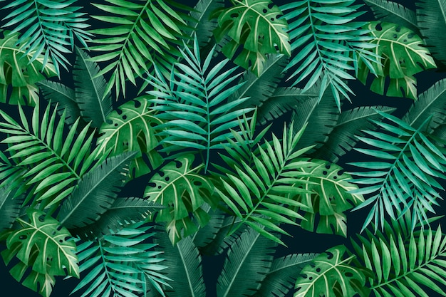 Large tropical green leaves background