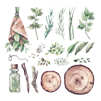 Large watercolor set of herbs, medical bottles, oils. hand-drawn illustrations of organic medicinal plants and storage utensils.  health and self-care