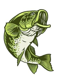 オオクチバスの魚