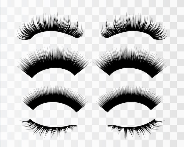 Lashes isolated on transparent. false eyelashes set