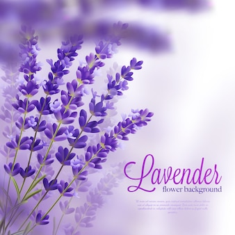 Lavender branches realistic background