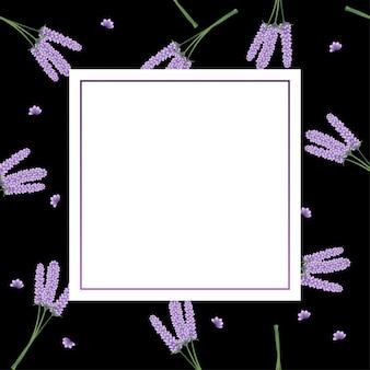Lavender flower frame on black background